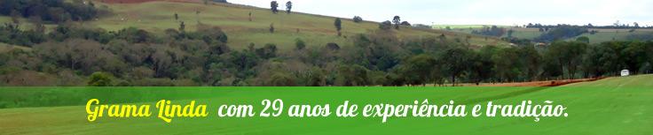 Grama Linda img_empresa_2 Empresa    grama esmeralda